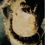 Schnorkel Head